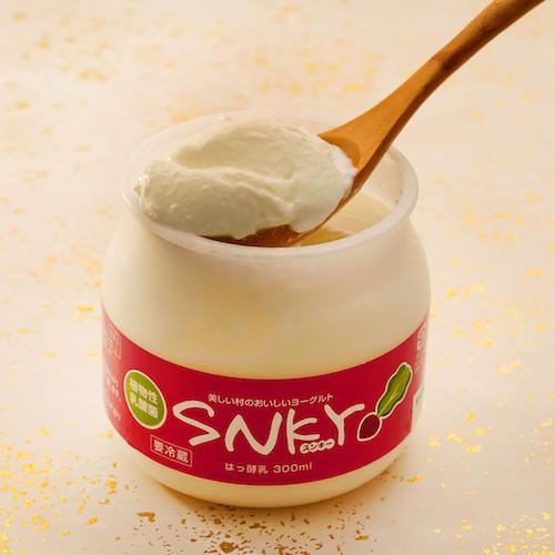 植物性乳酸菌ヨーグルト「SNKY|スンキー」